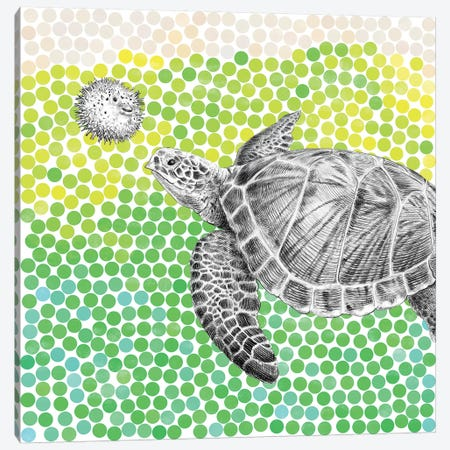 New Friends Series: Turtle and Puffer Fish I Canvas Print #EFN44} by Eric Fan Canvas Art
