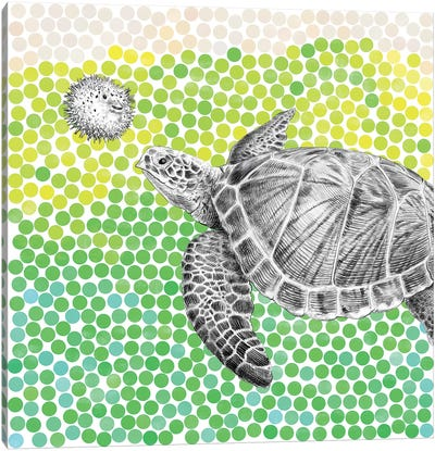Turtle and Puffer Fish I Canvas Art Print