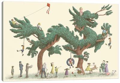 Illustrations From The Night Gardner: Dragon Tree Canvas Print #EFN53