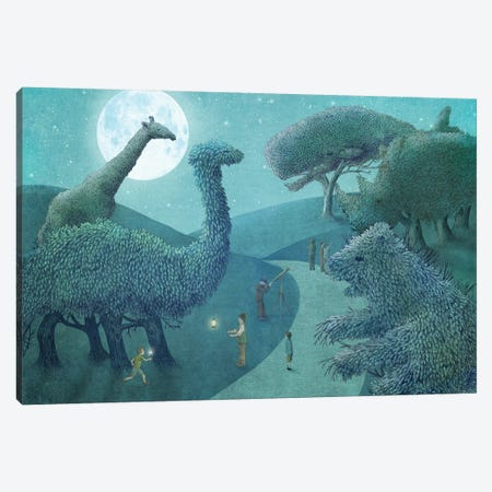 Illustrations From The Night Gardner: Summer Park At Night Canvas Print #EFN58} by Eric Fan Canvas Art