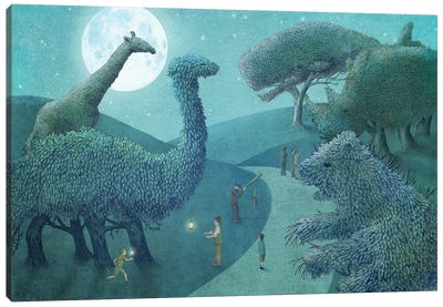 Summer Park At Night Canvas Art Print
