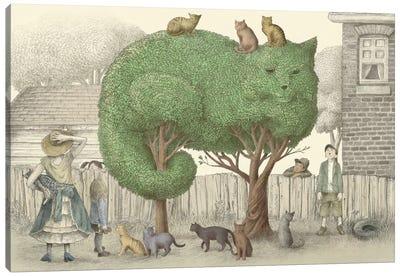 Illustrations From The Night Gardner: The Cat Tree Canvas Print #EFN59