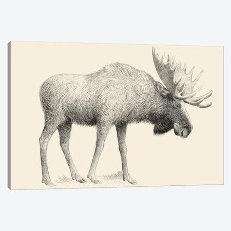 Moose Canvas Print #EFN61} by Eric Fan Canvas Art Print