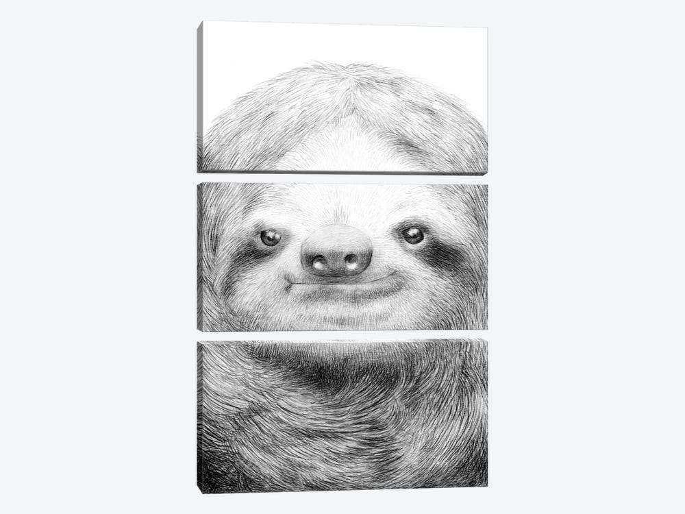 Sloth by Eric Fan 3-piece Canvas Art Print