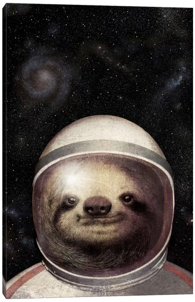 Space Sloth Canvas Art Print