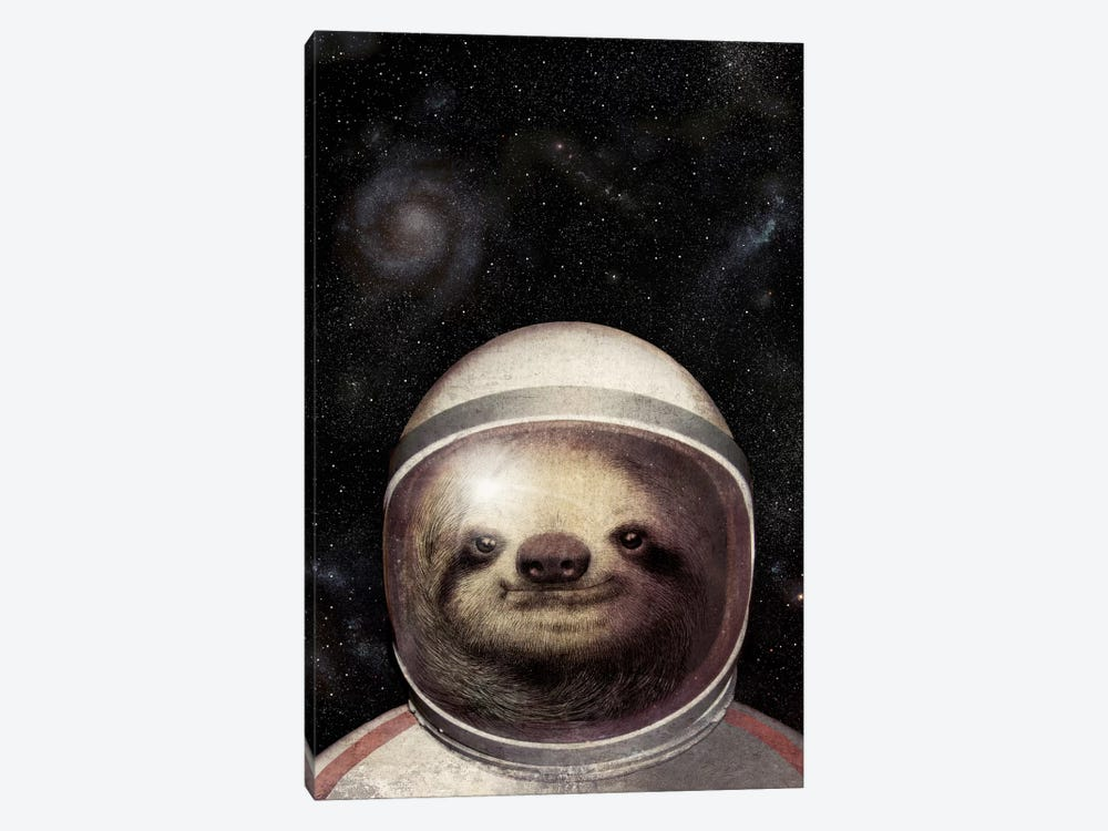 Space Sloth 1-piece Canvas Wall Art