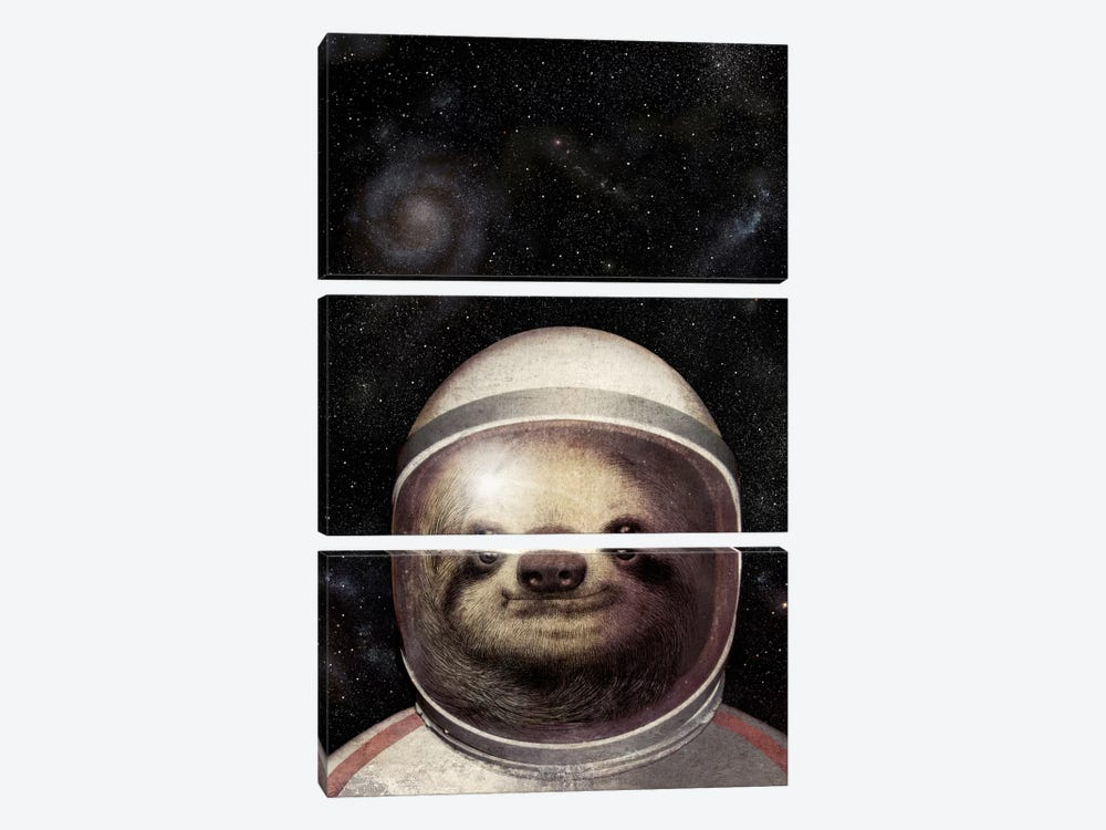 Space Sloth 3-piece Canvas Wall Art