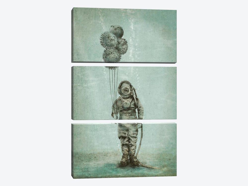 Balloon Fish by Eric Fan 3-piece Canvas Wall Art