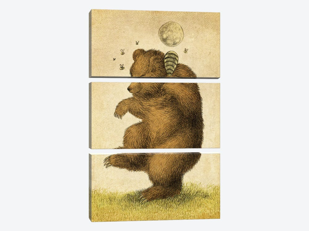 Honey Bear by Eric Fan 3-piece Canvas Wall Art