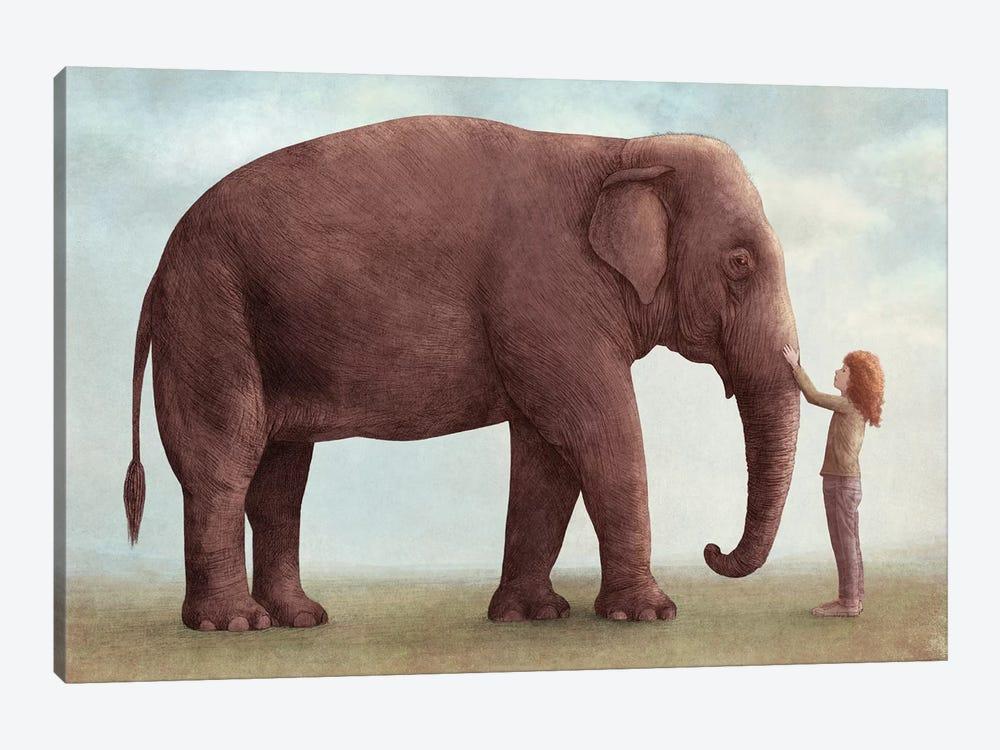 One Amazing Elephant I by Eric Fan 1-piece Canvas Art