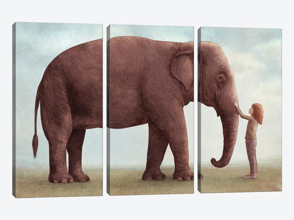 One Amazing Elephant I by Eric Fan 3-piece Canvas Artwork