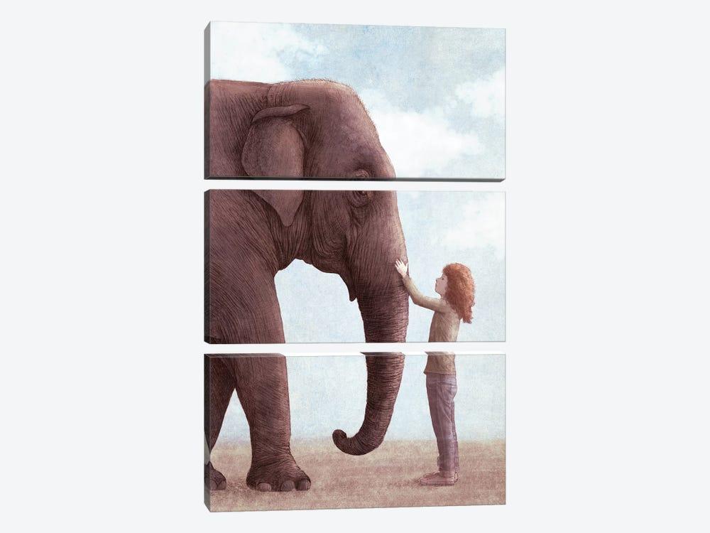 One Amazing Elephant II by Eric Fan 3-piece Canvas Art