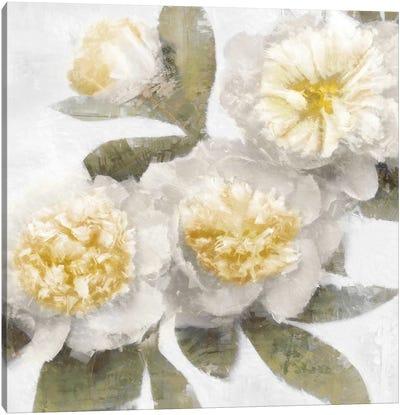 Ivory Bloom Canvas Art Print