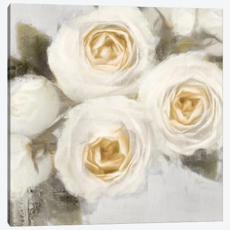 Ivory I Canvas Print #EFO15} by Emily Ford Canvas Art