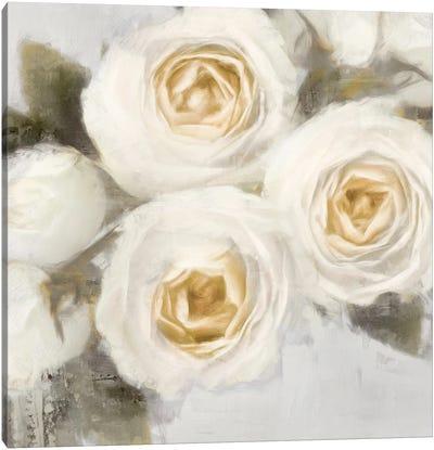 Ivory I Canvas Art Print