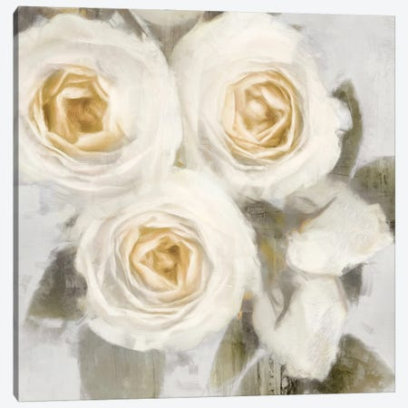 Ivory II Canvas Print #EFO16} by Emily Ford Canvas Wall Art