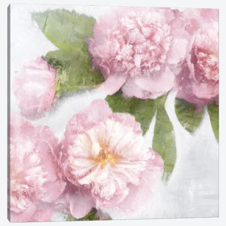 Pink Bloom II Canvas Print #EFO18} by Emily Ford Art Print