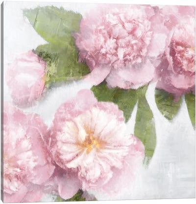Pink Bloom II Canvas Art Print