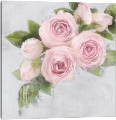 Pretty Pink Canvas Art Print
