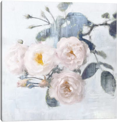 Delicate Blush I Canvas Art Print