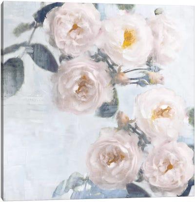 Delicate Blush II Canvas Art Print