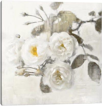 Delicate I Canvas Art Print