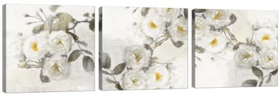 Delicate Diptych Canvas Art Print