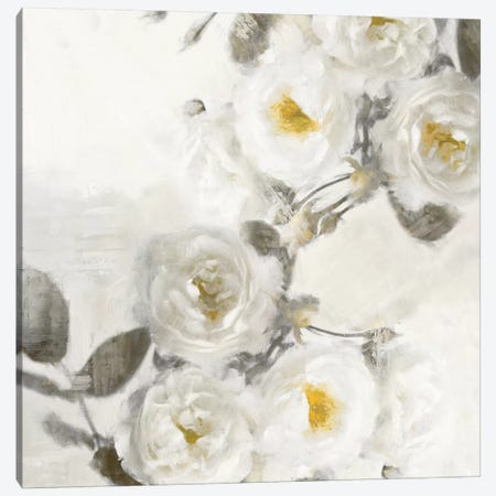 Delicate II Canvas Print #EFO4} by Emily Ford Art Print