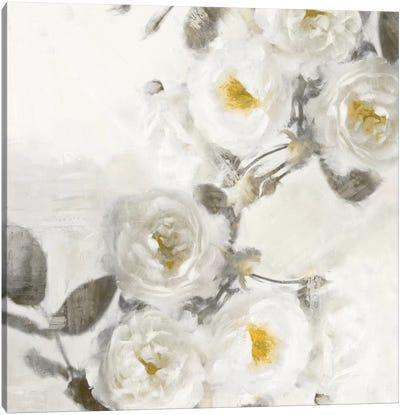 Delicate II Canvas Art Print