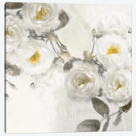 Delicate III Canvas Print #EFO5} by Emily Ford Canvas Art Print