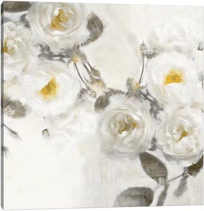 Delicate III Canvas Art Print