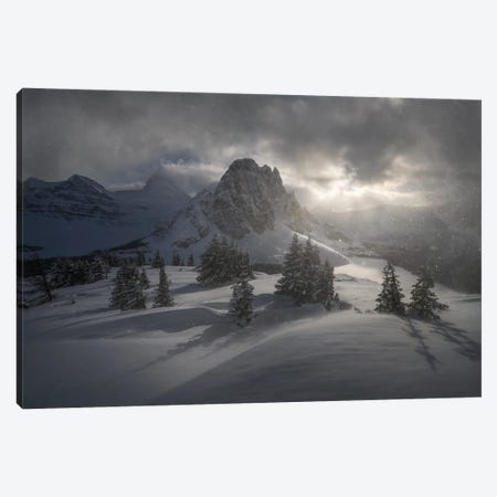 Rage Of The Winter Canvas Print #EFS23} by Enrico Fossati Canvas Art