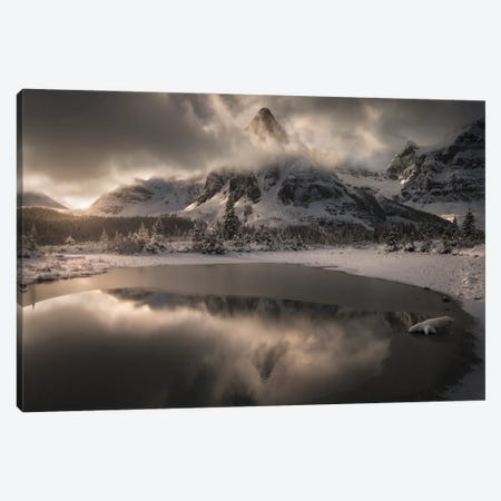 The Frosted Kingdom Canvas Print #EFS26} by Enrico Fossati Art Print