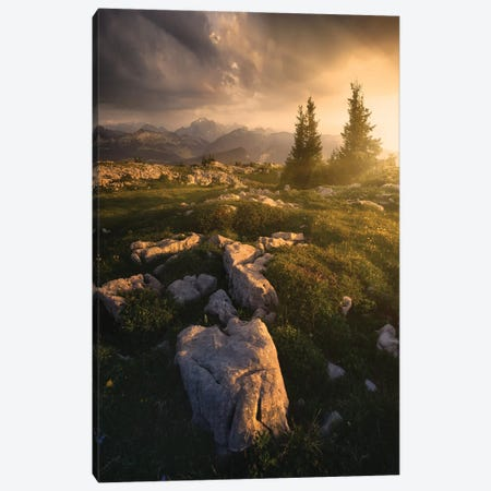 The Light Is Coming Canvas Print #EFS92} by Enrico Fossati Art Print