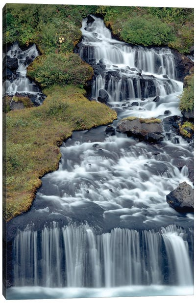 Iceland, Hraunfossar. Tiny cascades emerge from the lava to flow into the Hvita River over a half mile stretch. Canvas Art Print