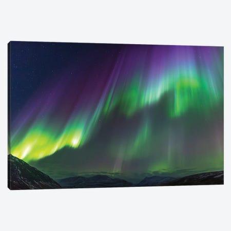 Iceland, Akureyri. Northern Lights glowing V Canvas Print #EGO21} by Ellen Goff Canvas Print