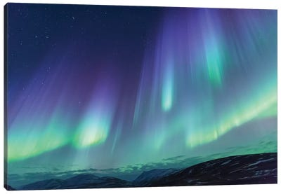 Iceland, Akureyri. Northern Lights glowing VI Canvas Art Print