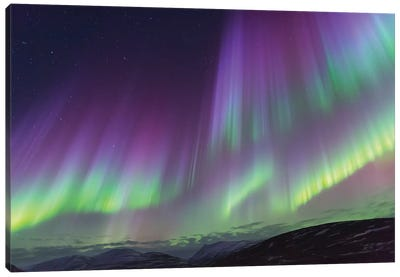 Iceland, Akureyri. The northern lights glow in unbelievable colors II Canvas Art Print