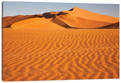 Namibia, Namib-Naukluft National Park, Sossusvlei. Scenic red dunes with wind driven patterns. Canvas Art Print