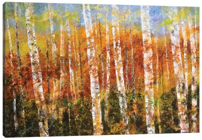 Autumn View Canvas Art Print