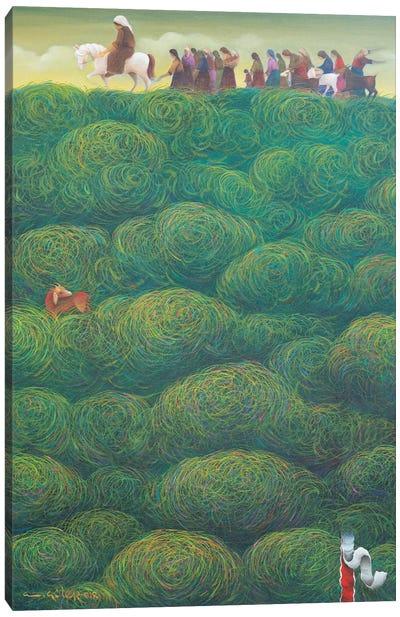 Migration Season Canvas Art Print