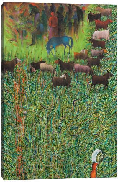 On The Edge Of Life Canvas Art Print