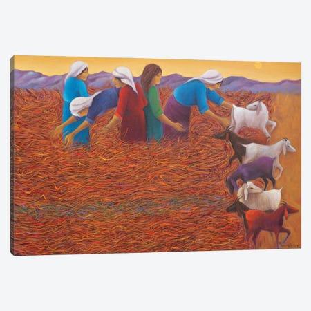 Time On Cropland Canvas Print #EGU20} by Emin Güler Art Print