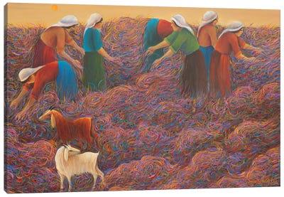 Under The Sun II Canvas Art Print