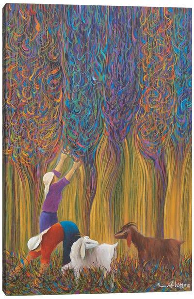 Wish Tree Canvas Art Print