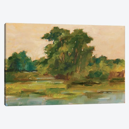 Changing Sunlight I Canvas Print #EHA109} by Ethan Harper Canvas Print