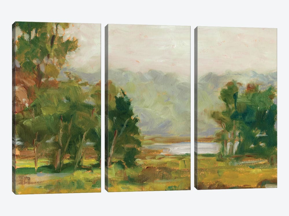 Changing Sunlight II by Ethan Harper 3-piece Canvas Art Print