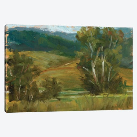 Changing Sunlight IV Canvas Print #EHA112} by Ethan Harper Canvas Wall Art