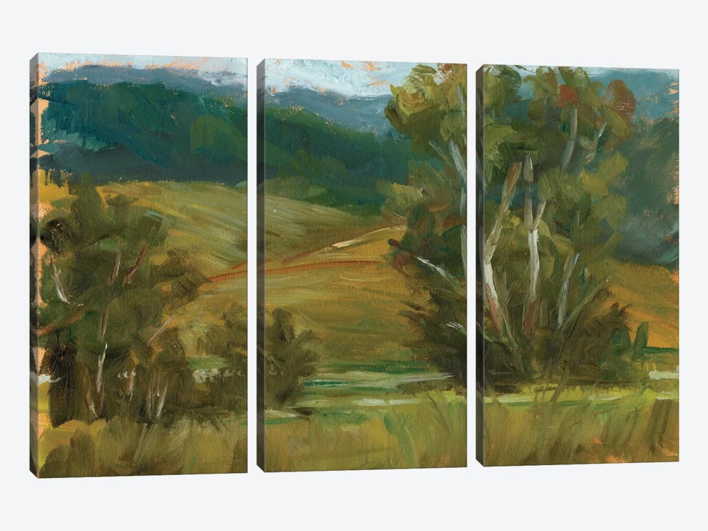 Changing Sunlight IV by Ethan Harper 3-piece Canvas Art Print
