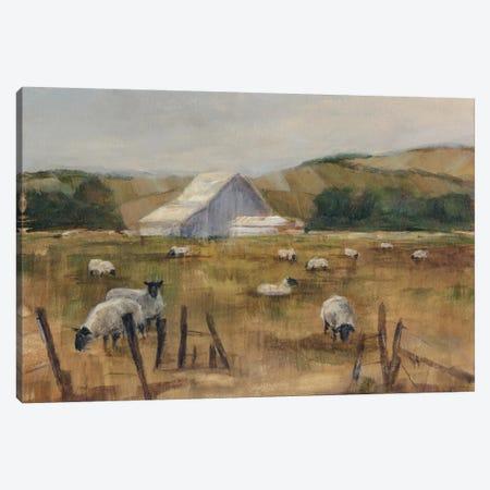 Grazing Sheep I Canvas Print #EHA119} by Ethan Harper Canvas Art
